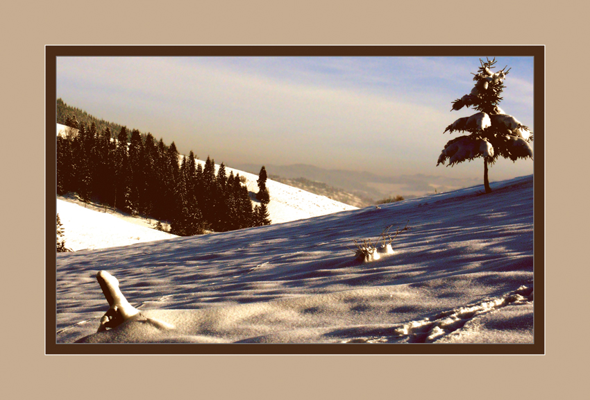 205 - Teplá zima