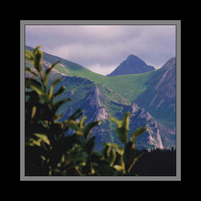 207 - Letné hory
