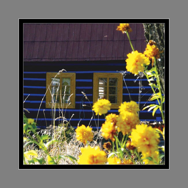 216 - Medzi kvetmi