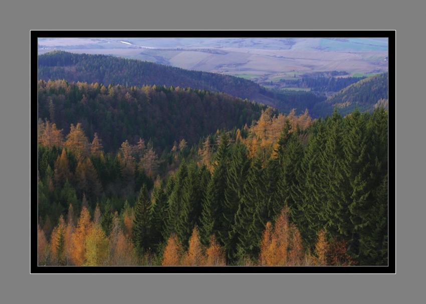 224 - Jesenné doliny