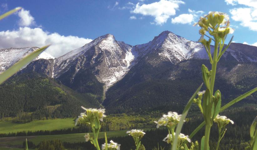 180 - Jar v horách