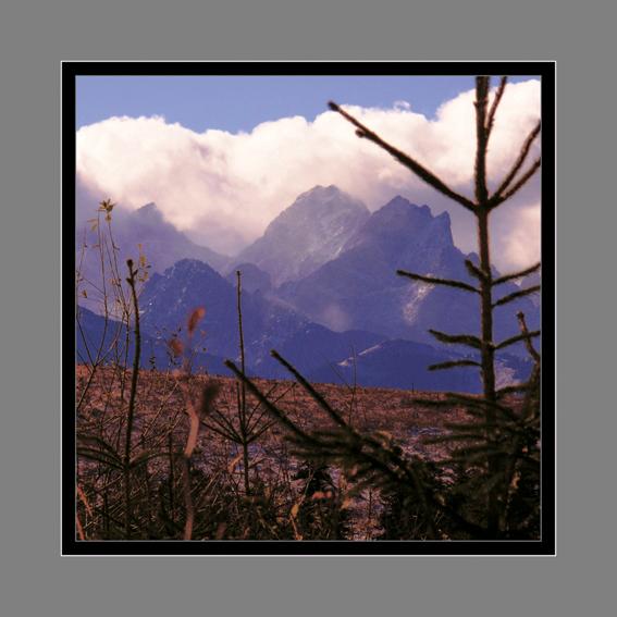 39 - V horách III